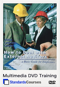 How to Deal with External Auditors